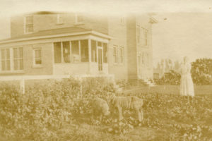 1911 mansion, historical photo, new meadows